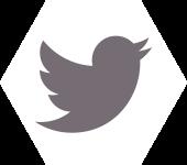ZakelijkeWorkshops.nl-twitter