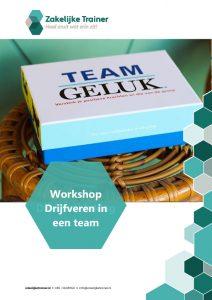 Brochure Workshop Drijfveren in een team